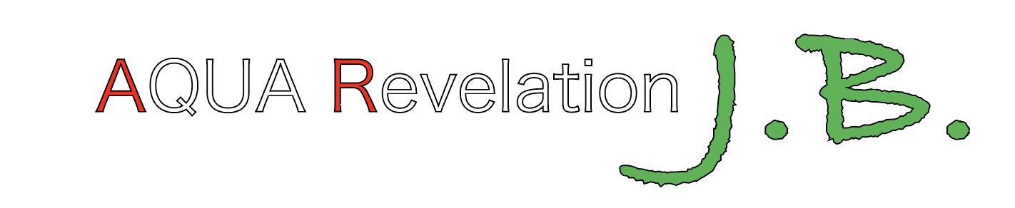 AQUA Revelation J.B.(旧白猫)